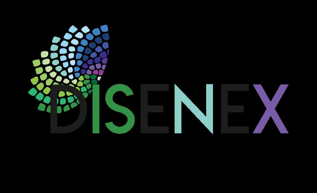 DISENEX – Strokovnjak za podjetništvo invalidov